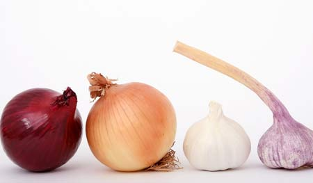 Onion Masks