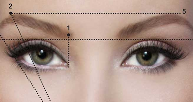 Give the Arch shape in your brow