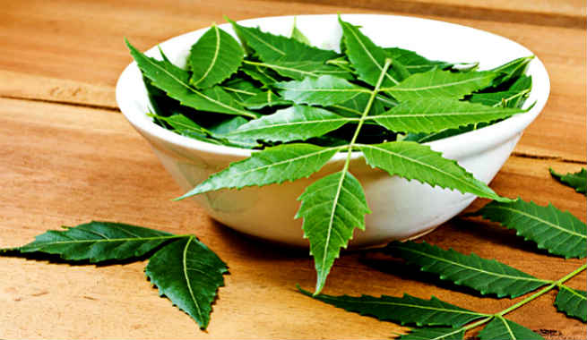 How To Use Neem For Curing Dandruff And Getting Lustrous Hair